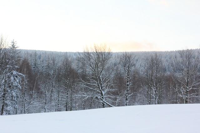 zima 03