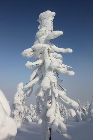 zima trwa 02